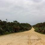 沖縄久高島の行き方とフェリーの時間、レンタサイクルでカベール岬生まれ変わりの穴へ